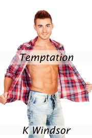 Temptation ebook by K Windsor