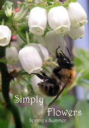 Simply Flowers, Spring and Summer ebook by Kobo.Web.Store.Products.Fields.ContributorFieldViewModel