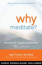 Why Meditate?: Working with Thoughts and Emotions ebook by Matthieu Ricard