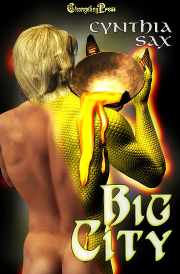 Big City (Box Set) ebook by Cynthia Sax