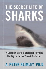 The Secret Life of Sharks - A Leading Marine Biologist Reveals the Mysteries o ebook by A. Peter Klimley, Ph.D.