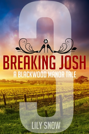 Breaking Josh 3 ebook by Lily Snow