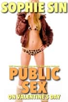 Public Sex On Valentine's Day (M/F: Romance Erotica, Large Breasts, Big Member, Outdoors) ebook by Sophie Sin
