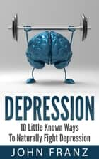 Depression - 10 Little Known Ways to Naturally Fight Depression ebook by John Franz