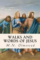 Walks and Words of Jesus ebook by M.N. Olmstead