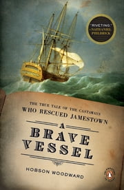 A Brave Vessel - The True Tale of the Castaways Who Rescued Jamestown ebook by Hobson Woodward