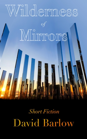 Wilderness of Mirrors ebook by David Barlow