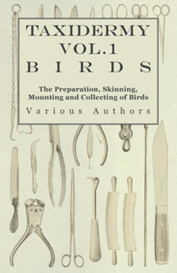 Taxidermy Vol.1 Birds - The Preparation, Skinning, Mounting and Collecting of Birds ebook by Various Authors