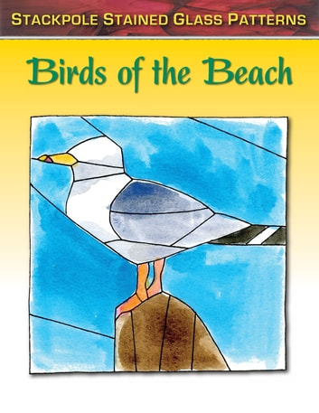 Birds of the Beach ebook by Sandy Allison