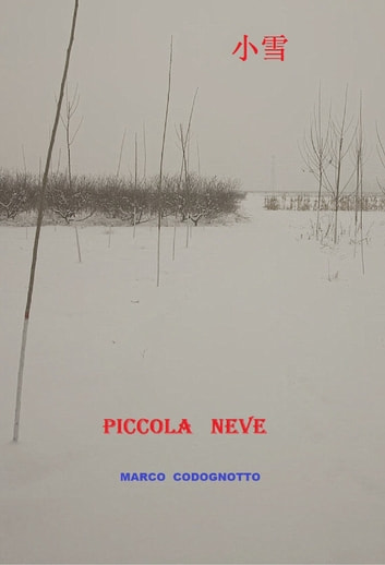 Piccola Neve ebook by Marco Codognotto