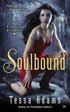 Soulbound - A Lone Star Witch Novel ebook by