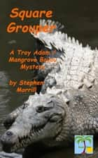 Square Grouper ebook by Stephen Morrill