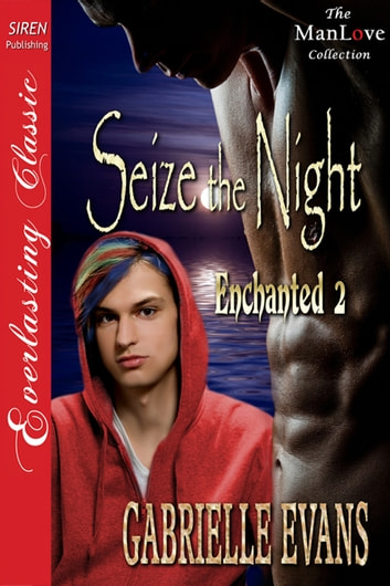 Seize the Night ebook by Gabrielle Evans