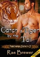 Catch a Tiger by the Tail ebook by Rae Brewer