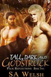Tall, Dark and Godstruck ebook by SA Welsh