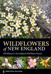 Wildflowers of New England - Timber Press Field Guide ebook by Ted Elliman,New England Wild Flower Society