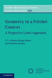 Geometry in a Frechet Context ebook by Dodson, C. T. J.
