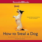 How to Steal a Dog audiobook by Barbara O'Connor