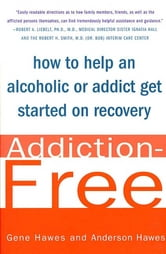 Addiction-Free - How to Help an Alcoholic or Addict Get Started on Recovery ebook by Gene Hawes,Anderson Hawes