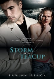 Storm In A Teacup ebook by Fabian Black