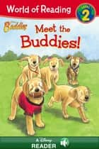 World of Reading Disney Buddies: Meet the Buddies - A Disney Reader with Audio (Level 2) ebook by Catherine Hapka