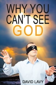 Why You Can't See God ebook by David Lavy