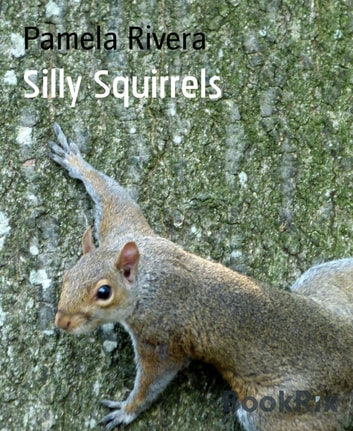 Silly Squirrels ebook by Pamela Rivera