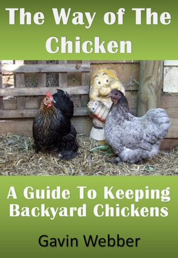 The Way Of The Chicken: A Guide To Keeping Backyard Chickens Ebook By Gavin  Webber