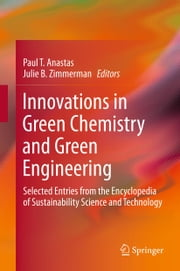 Innovations in Green Chemistry and Green Engineering - Selected Entries from the Encyclopedia of Sustainability Science and Technology ebook by Paul T. Anastas,Julie B. Zimmerman