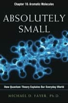 Absolutely Small, Chapter 18 ebook by Michael D. FAYER