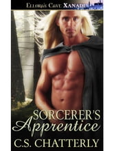 Sorcerer's Apprentice ebook by C.S. Chatterly
