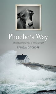 Phoebe's Way ebook by Pamela Ditchoff