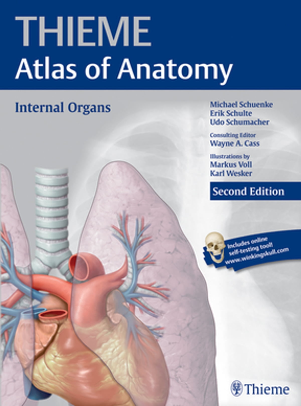 Internal Organs Thieme Atlas Of Anatomy Ebook By Michael Schuenke