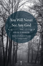 You Will Never See Any God - Stories ebook by Ervin D. Krause, Timothy Schaffert