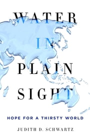 Water in Plain Sight - Hope for a Thirsty World ebook by Judith D. Schwartz
