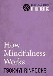 How Mindfulness Works ebook by Tsoknyi Rinpoche