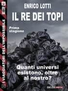 Il Re dei Topi ebook by Enrico Lotti