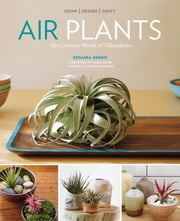 Air Plants - The Curious World of Tillandsias ebook by Zenaida Sengo,Caitlin Atkinson