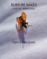 Burn Me Naked- Love My Naked Soul ebook by Vipin Behari Goyal