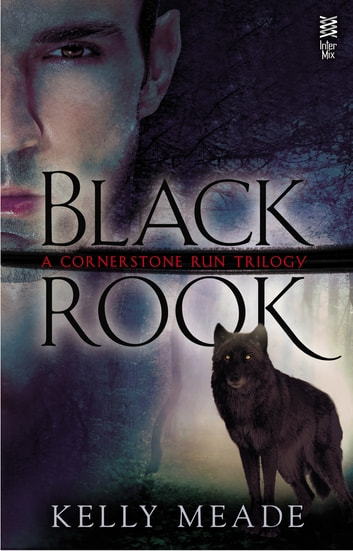Black Rook ebook by Kelly Meade
