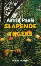 Slapende tijgers ebook by Astrid Panis