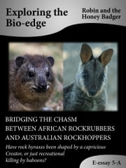 Bridging The Chasm Between African Rockrubbers And Australian Rockhoppers ebook by Robin and the Honey Badger
