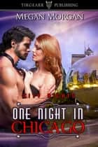 One Night in Chicago ebook by Megan Morgan