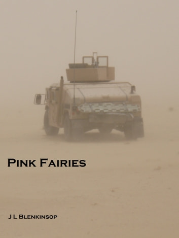 Pink Fairies ebook by J L Blenkinsop
