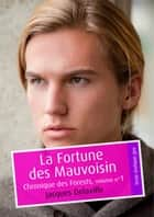 La Fortune des Mauvoisin (érotique gay) ebook by Jacques Delaville