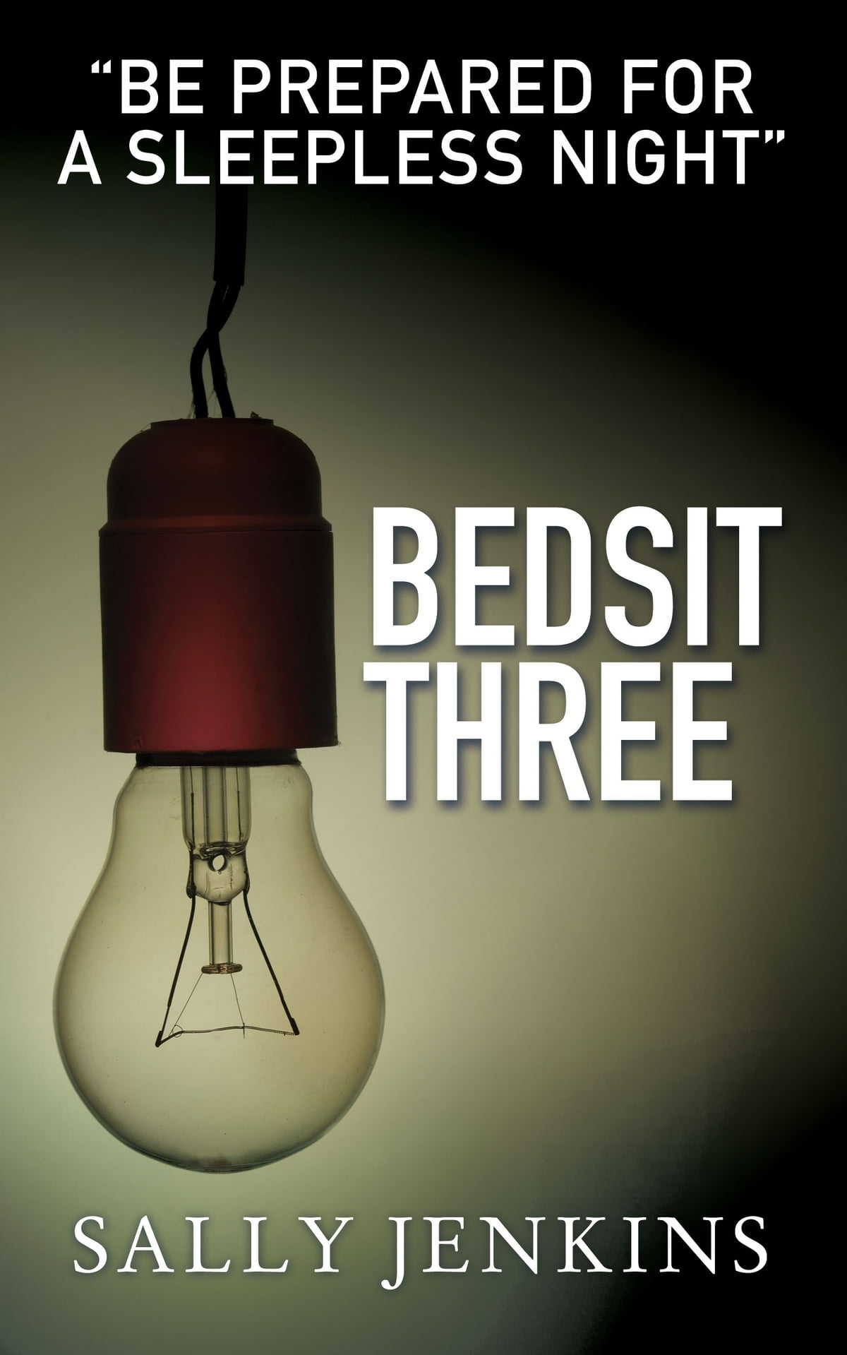 Bedsit Three  A Tale Of Murder, Mystery And Love Ebook By Sally Jenkins
