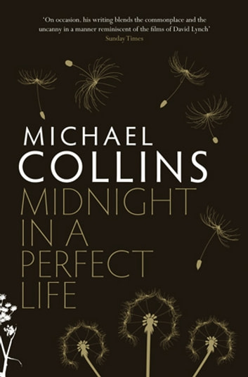 Midnight in a Perfect Life ebook by Michael Collins
