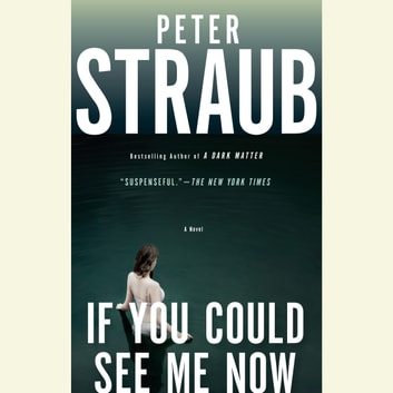 If You Could See Me Now audiobook by Peter Straub