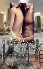 Healing love - Shadows of the past, T2 eBook by Laura Black