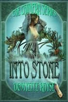 Into Stone ebook by Domyelle Rhyse,T.K. Richardson